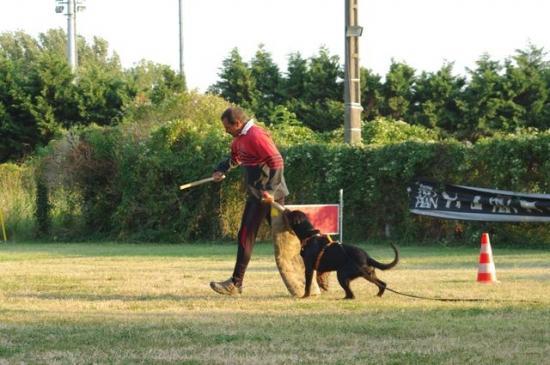Drago, été 2009