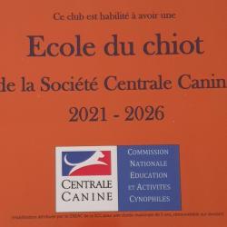 Ecole du Chiot
