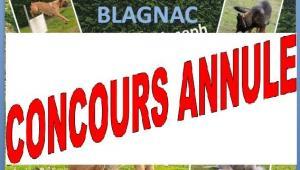 Affiche concours obe blagnac annule