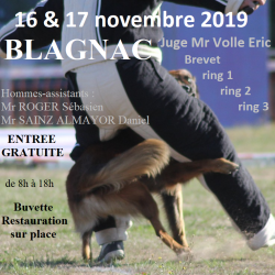 Concours Ring