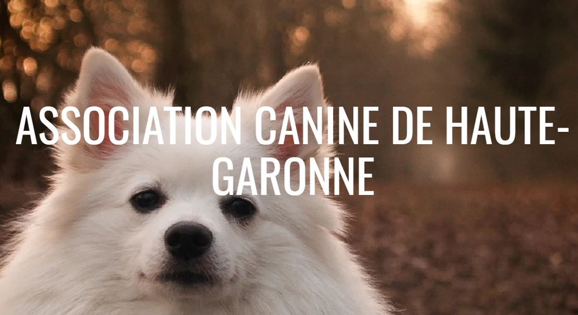 Asssociation Canine de la Haute Garonne