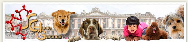 Société Canine de la Haute Garonne