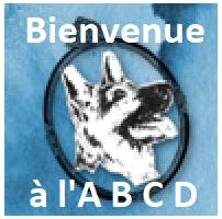 Bienvenue à l'ABCD