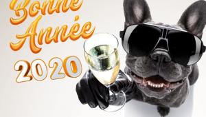 Bonneannee20