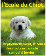 Cours annule 1