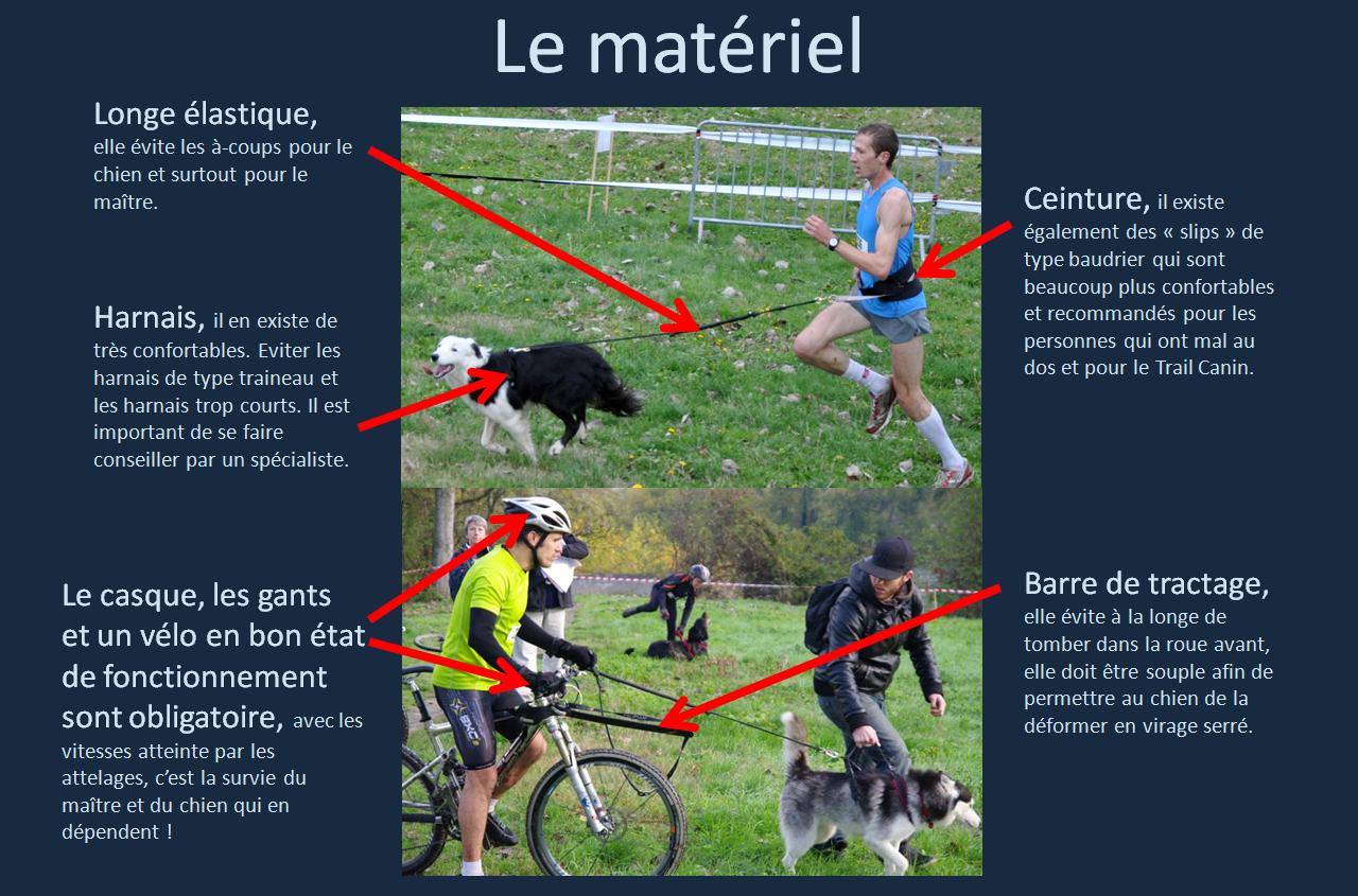 Matériel cross canin