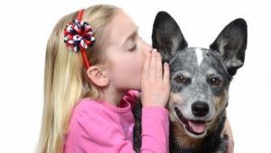 Parler a son chien